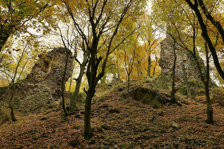 Biely Kamen castle ruin in Little Carpathian mountains