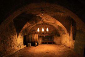 Wine tasting in a wine cellar