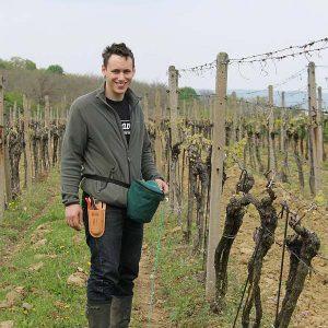 Cenký winery