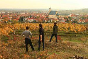 Carpathian Wine Tour