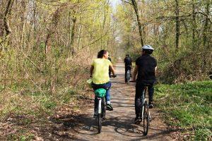 Bratislava Iron Curtain Bike Tour Forest