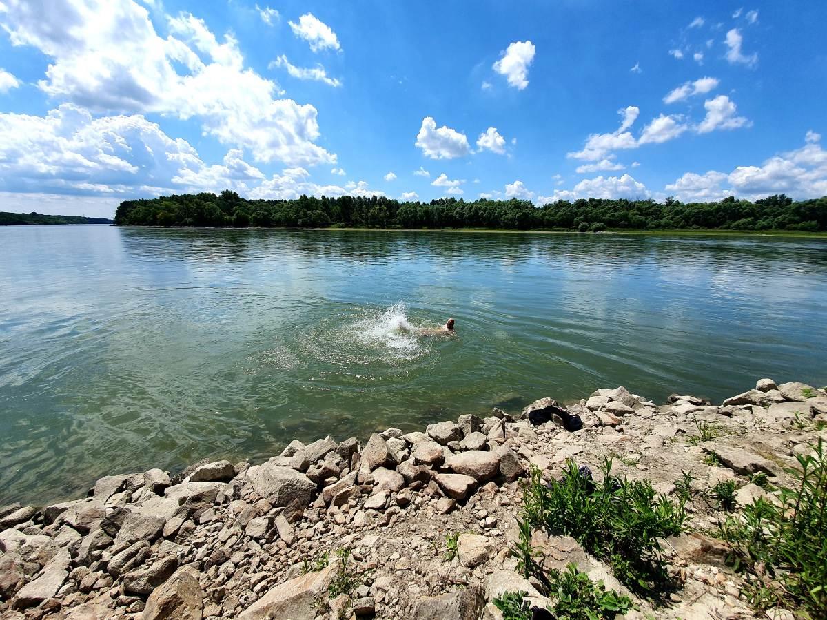 Summer in Danube